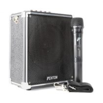 "Fenton ST040, prenosný zosilňovač, 40W, akumulátor, bluetooth, USB, 6,5"", subwoofer"